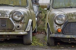 . minimal car, maximum fun