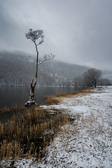 outcast (akh1981) Tags: winter landscape lakedistrict lake travel trees tranquil outdoors nikon nisi buttermere wideangle nature cumbria clouds manfrotto moody mountains calm uk