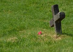 Never Truly Forgotten (Rackelh) Tags: grave graveyard grass stone gravestone travel ireland glendalough