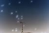 Night... (Matthias Harbers) Tags: tokyo japan nikon d750 tamron 2470mm f28 di vc usd g2 sp test review dslr photoshop labs dxo city street photography topaz night sky stars blue orange