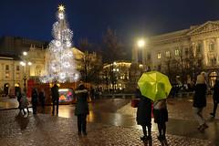 A Milano a inizio gennaio (STE) Tags: milano milan notte night fuji fujifilm xt20 pioggia rain raining ombrello umbrella albero natale christmas tree