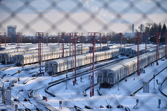 Vanishing Fence, Slumbering Trains (Bad Alley (Cat)) Tags: subway train trains toronto ttc railyard grey red snow winter fence