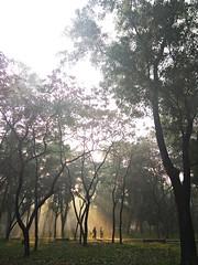 Morning Jog (ainulislam) Tags: ature run jog walking health sunrise sunlight nature park parklife bangla bd sunrays rays chat morning