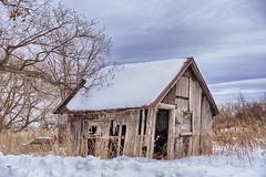 Snowy Shack (gabi-h) Tags: shack dilapidated architecture abandoned princeedwardcounty princeedwardpoint pointtraverse longpoint sky winter gabih trees clouds cold january weathered weatherbeaten sumacs