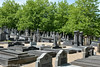 Cimetière Bellevue - 020 (florentgold) Tags: florent glod floglod florentglod lëtzebuerg lëtzebuerger lëtzebuergesch luxemburg luxemburger luxembourgeois luxembourgeoise luxembourgeoises luxembourg letzebuerg grandduchy grandduché grossherzogtum bellevue belle vue cimetière friedhof juif juifs juive juden judenfriedhof jüdischer jewish israéilite vdl stad ville de limpertsberg lampertsbierg