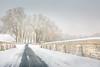 Chambord-neige-fev18-058-1700 (Diane de Guerny) Tags: chambord neige paysage snow castle château de architecture snowy cold history france loire hiver winter froid
