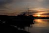 Dawn in Matsushima(松島の夜明け) (daigo harada(原田 大吾)) Tags: 松島 matsushima dawn