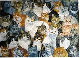 Just Cats (Helen Vladykina)