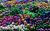 Land of Mardi Gras beads (Monceau) Tags: beads colorful mardigras overthetop 6obsession 118picturesin2018 obsession 45365 365picturesin2018 365the2018edition 3652018 day45365 14feb18