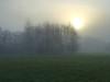 Atmosphere (Heaven`s Gate (John)) Tags: misty morning trees sun fog grass field atmosphere dawn england johndalkin heavensgatejohn 10faves