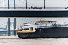 Young Generation (ARTUS8) Tags: flickr schiff modernearchitektur menschen nikon28300mmf3556 brücke nikond800 rhein personen düsseldorf