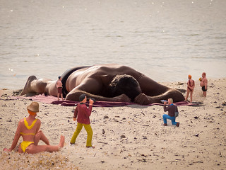 Gulliver washes up on a local beach