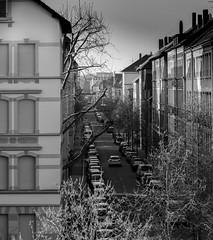 Braunschweig (sieg.kevin) Tags: street strase architecture architektur houses häuser braunschweig brunswiek bw blackwhite schwarzweis outdoor