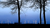 flevoland windmills black&blue (tvdijk19) Tags: windmill windmolen flevoland netherlands holland