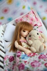 [ADAW 3] Sweet Dreams ♥ (SunShineRu) Tags: ltf littlefee luna sleeping sp rabbit bed fairyland bjd ball jointed doll yosd cute kawaii