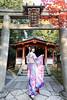 20171128-20171128-COW_8642_2 (axzong0104) Tags: 八坂神社 浴衣 振袖 着衣