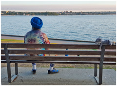 Buddies (HereInVancouver) Tags: sikh turban stuffedanimal water ocean pacific outdoors city urban beach englishbay lifeonaparkbench vancouverswestend candid streetphotography vancouver bc canada canong16 summer
