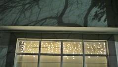 Ciel étoilé (Robert Saucier) Tags: mexico mexicocity fenêtre window vitre glass cristal lumières ciel sky nuit night noflash arbre tree silhouette maison house building architecture img7868