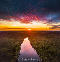 Florida Gold (DonMiller_ToGo) Tags: cloudsonfire cloudporn sunsetmadness sunsets nature reflection goldenhour panorama clouds mavicpro drone panoramic fireinthesky river aerial sky sunsetsniper outdoors florida water panoimages3 venice unitedstates us