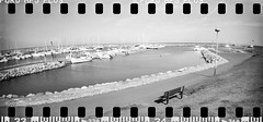 2017-08 - 097SR_17 (sarajoelsson) Tags: sprocketrocket blackandwhite bw panorama panoramic sprocketholes digitizedwithdslr toycamera ilford 135 35mm hp5 monochrome plasticlens filmphotography filmisnotdead believeinfilm filmshooter film wideangle lomography lomo xtol teamframkallning bnw svartvitt blackwhite sweden 2017 summer summertime august vacation skåne österlen sverige