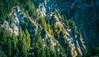 Mountain slopes (Ilia Danilov) Tags: germany travel neuschwanstein bavaria nature castle mountains mountain lake see alpsee europe flickr