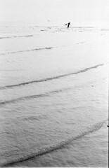 Untitled (vytautas ambrazas) Tags: 35mmfilm analogphotography arabiansea backbay bombay fisherman fishing girgaonchowpatty ilfordhp5plus400 india mumbai photography pixvoyagecom shootfilm travel travelphotography