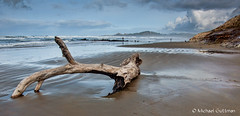 A Day on the Beach (Michael Guttman) Tags: oregoncoast newport oregon nyebeach coast beach ocean sea waves water sand driftwood clouds sky nikon d90 ripples reflection rocks landscape seascape