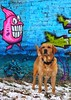 Graffiti dog by Julie Adams (julz.adams) Tags: labby pink colour colourful chilling cool graffiti outdoors outstanding animal red foxred fox fix lab labrador pet per dog canon100d 100d canon photo photographer photography trend trending beastfromtheeast winter snow aberdeen