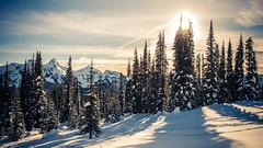 Snow and the Sun (ValeTer_) Tags: nikond7500 mtrainiernationalpark nationalpark usa wa washingtonstate rainier snow winter