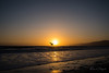 First sunset in Santa Monica (rfabregatmoliner) Tags: santamonica losangeles la unitedstates travel travelphotography sunset seagull blacklight blacklit nikon nikon750