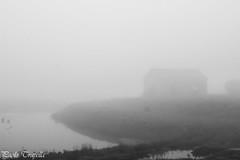 Nebbia in val padana (paolotrapella) Tags: nebbia italy atmosfera bn black white