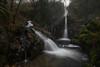 Rincones del bosque (Jose Cantorna) Tags: cascada agua water waterfall bosque arroyo río seda nikon d610 atmósfera ambiente nature