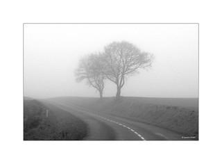 Deux amants perdus dans le brouillard...