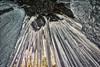 Ice Walls, Rock Ceiling..., 2018.01.10 (Aaron Glenn Campbell) Tags: rgsp rickettsglen statepark fairmounttownship luzernecounty pennsylvania 3xp ±2ev hdr moss lichen winter snow ice frozen pawaterfalls waterfall ozonefalls shade sunlight macphun aurorahdr2017 nikcollection viveza colorefexpro on1effects sony a6000 ilce6000 mirrorless rokinon 12mmf2ncscs primelens manualfocus wideangle emount