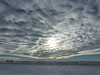 Clouds over the Prairies (annkelliott) Tags: alberta canada eofcalgary landscape scenery field snow snowcovered sky cloud clouds cloudformation sun outdoor winter 13january2018 fz200 fz2004 panasonic lumix annkelliott anneelliott ©anneelliott2018 ©allrightsreserved