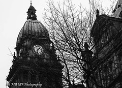 Leeds town hall through the trees (The friendly photographer.) Tags: art artistic britain blackwhite blackandwhite bw biancoenero beauty beautiful brilliant blancoynegro blanco blancoenero city citycentre d7100 d3200 dark england enblancoynegro ennoiretblanc flickrcom flickr google googleimages gb greatbritain greatphotographers greatphoto image inbiancoenero interesting leeds ls1 leedscitycentre leedstownhall january mamfphotography mamf monochrome nikon noiretblanc noir northernengland negro north nikond3200 onthestreet old photography photo pretoebranco photograph photographer schwarzundweis schwarz town trees tree uk unitedkingdom upnorth urban westyorkshire winter yorkshire zwartenwit zwartwit zwart