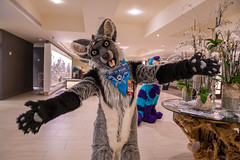 DSC01848 (Kory / Leo Nardo) Tags: furry fursuit suiting dance party dj con convention further confusion fc san jose marriott center 2018 fc2018 pupleo leo kory fur costume costuming cosplay animals