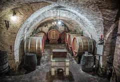 Winery in Tuscany (nicola.bonanno) Tags: winery tuscany italy wine montepulciano food glasses winetest