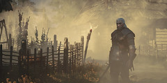 """""""Foggy Day"""" (Omegapepper) Tags: wallpaper screenshot gaming games witcher fog foggy geralt character pose atmospeheric atmosphere photography photomode vegetation fence nvidia ansel moody ambient outdoors land"""