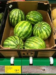 Watermelons (JulieK (thanks for 6 million views)) Tags: 100xthe2018edition 100x2018 image4100 iphonese wexford aldi supermarket fruit food green shop irish ireland 2018onephotoeachday