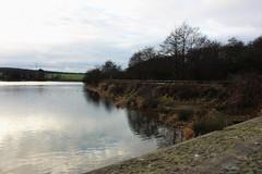 Ulley 016 (Slimboy Fat) Tags: ulley countrypark ulleycountrypark reservoir ulleyreservoir ulleyrotherham england unitedkingdom gb