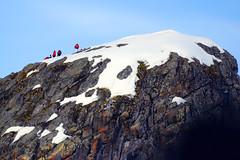 Brown_2017 12 11_2865 (HBarrison) Tags: harveybarrison hbarrison antarctica antarcticpeninsula paradiseharbor brownstation arctic antarctic arcticantarctic