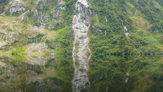Doubtful Sound Sees Double