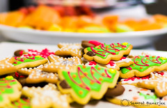 Christmas Cookies (Samrat_Banerjee) Tags: christmas cookies party holiday cream fruits biscuit delicious decoration dessert bokeh sony mirrorless a7riii food sweet dish eat snacks xmax winter cake brown homemade gingerbread tradition celebration baked confectionary treat