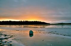 a frozen sunset (Elahe Dastgheib) Tags: sunset nature winter photography elahe golden sky sweden kairobadet sten lake sjö ston solnedgång stockholm upplandsväsby sverige