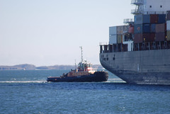 Freedom (jelpics) Tags: vessel containership conleyterminal msc msckatyar freedom tug tugboats cargoship commercialship merchantship boat boston bostonharbor bostonma harbor massachusetts ocean port sea ship
