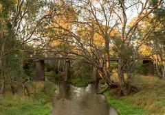 Bridge over the Campaspe River at Axedale (Matt OZW) Tags: australia victoria places landscape bridge campasperiver axedale