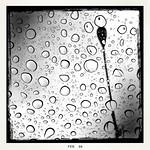 Winter Rain thumbnail