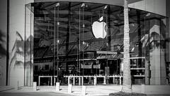 apple (boxerrod) Tags: windows apple people blackandwhite black white beams metal metalbeams tree concrete urban urbanjungle candid glass building architecture shiny flag reflections