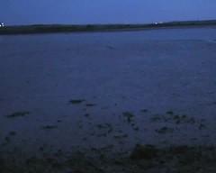 Quick splodge at dusk (essex_mud_explorer) Tags: hunter streamfisher rubber boots waders thighboots thighwaders rubberboots gummistiefel rubberlaarzen cuissardes watstiefel matsch schlamm boue mud muddy mudflats stanfordlehope mucking muckingflats thamesestuary riverthames rivermud